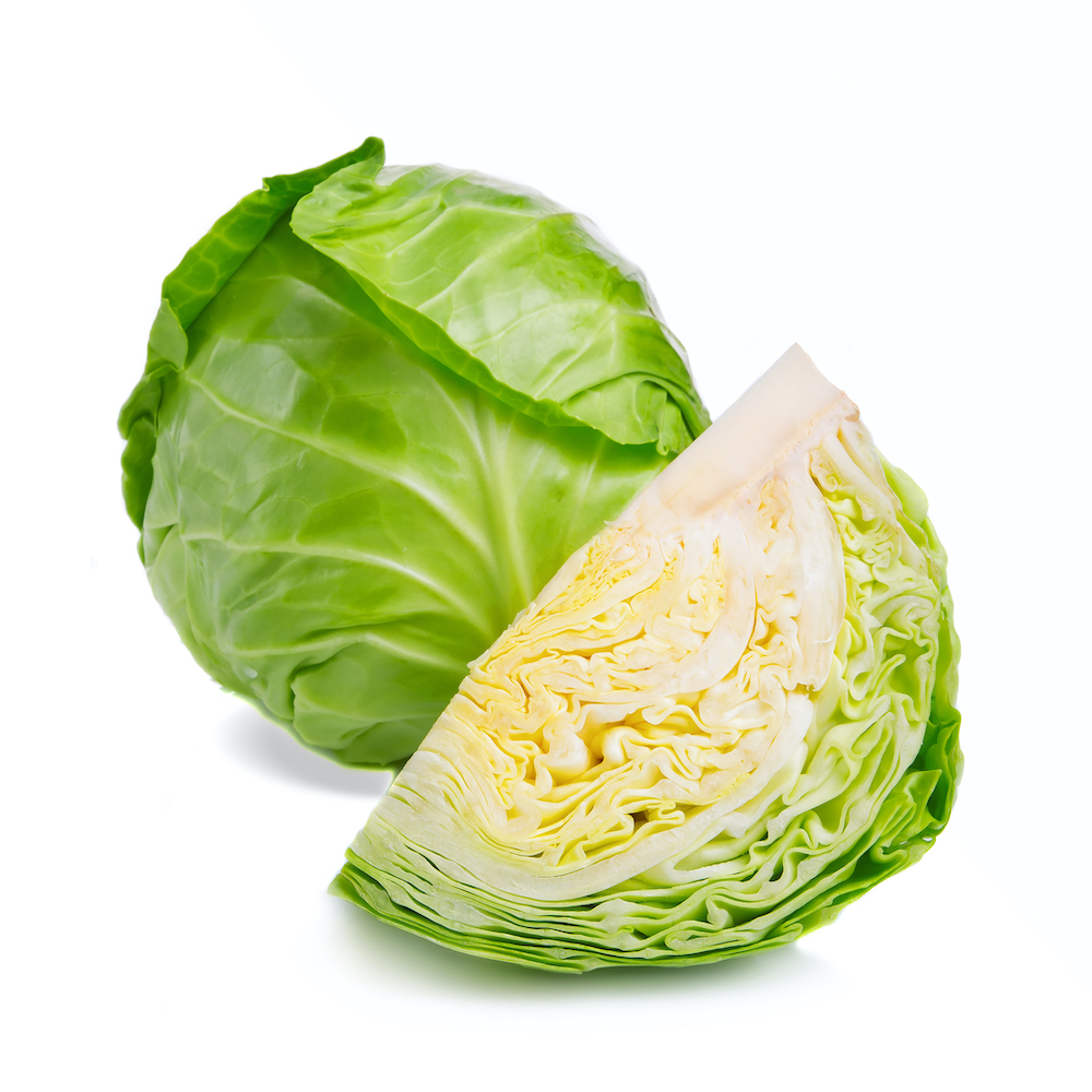 Fresh green cabbage and chopped part isolated