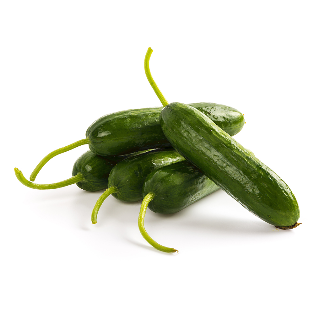 English-Cucumber-3