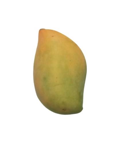 Mango Surai